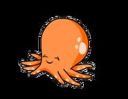 240px-Orangesquid