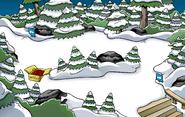 Apertura de la Bahía - Bosque 2