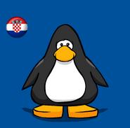 Croatia Flag on Player Card