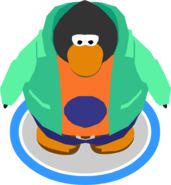 Antarctic Sun Outfit in-game