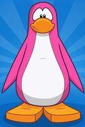 Creando un pingüino Rosa