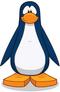 Pinguino azul-0