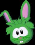 Conejo verde app
