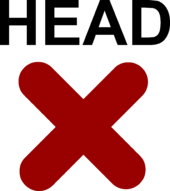 Remove Head Item clothing icon ID 1999-