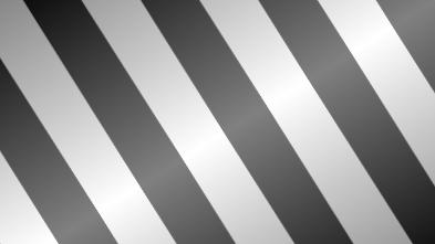 Zebra-Inverse-Bg