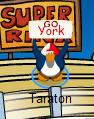 Go york