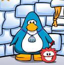 Penguin-Pal walking Asais