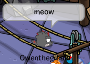 Meow Dino