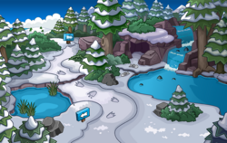 Puffle Party 2015 The Wilds 1