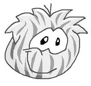 Zebra puffle costum