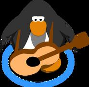 Acoustic Guitar IG