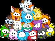 TodosLosPuffles-Adoptables