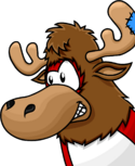 Jupiter the moose