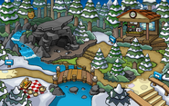 Puffle Party 2014 Forest