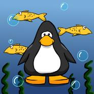 FishBGPC