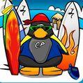Surfboarder 2