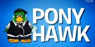 Presentación de Pony Hawk en I'm A Mod