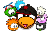 Puffle-Lover Icon