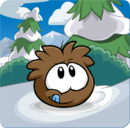 Puffle Party 2013 Transformation Puffle Brown