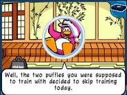 Puffles skip training