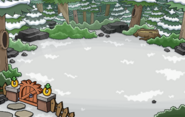 Igloo Backyard Location 3