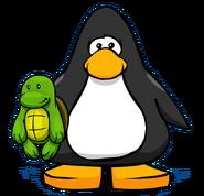 Tortuga (Perfil)