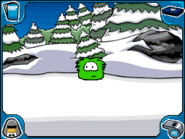 Green puffle Forest