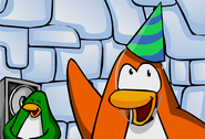 St year party hat club penguin wiki fandom powered by wikia