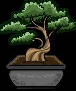 Bonsai Tree sprite 002