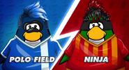 Polo vs ninja'