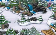El Bosque Enero 23, 2014 - Presente