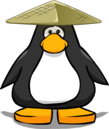 Bamboo Hat on a Player Card