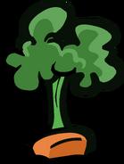 CarrotPlant