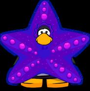 Disfraz de Estrella de Mar carta