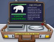 Polarear