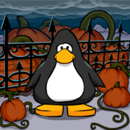 Giant Pumpkin background from a Player Card
