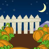 Pumpkin Patch Background