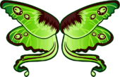 Moth Wings icon