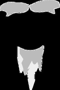 Sensei's Beard and Eyebrows
