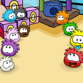 Pet Shop Puffles Background