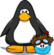Puffle Hats shockofhair player card