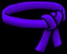 Purple Ninja Belt icon