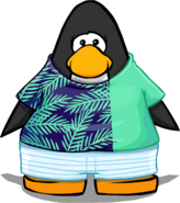 Clothing 24304 player card