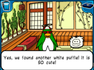 Another white puffle