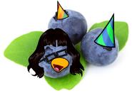 Blueberryiez