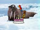 Penguin pal walrus