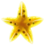 Quest item Gold Starfish icon