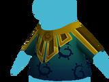 Ceremonial Coat