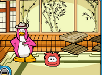 TP 2008