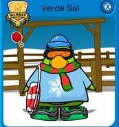 Verdesal4